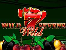 7S Wild
